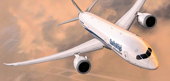 QualityWings 787 Update Released! | PC Flight